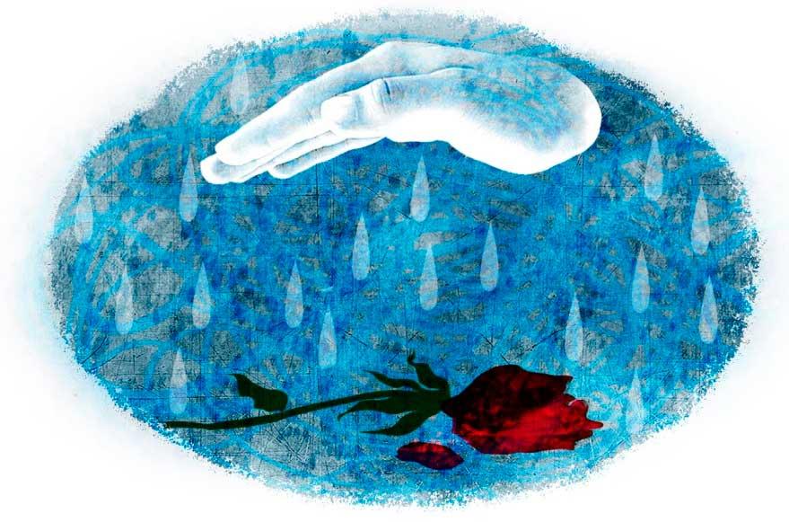 Умирающая роза